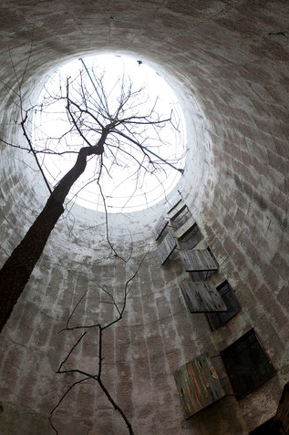 silo_with_tree