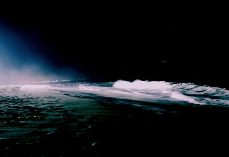 Malibu Waves Night