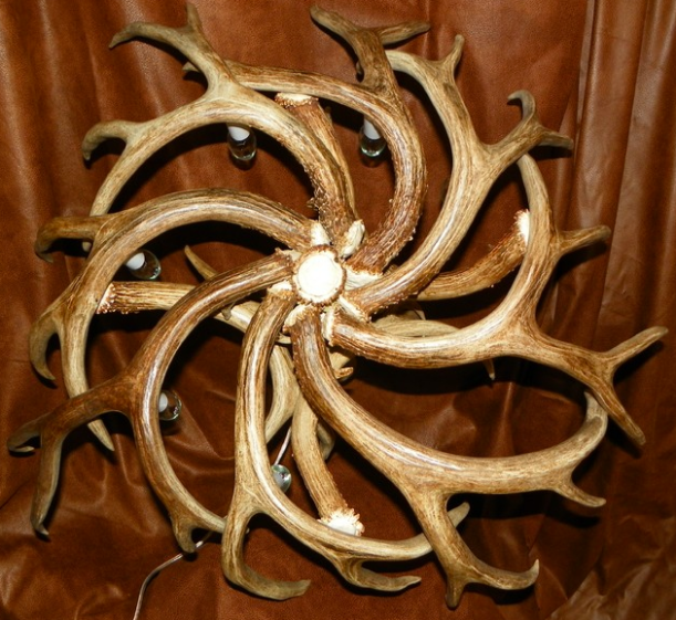 Antler Chandelier - Dallas